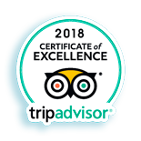 Best Excursions Lanzarote for Tripadvisor